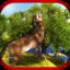 Wild Wolf 3D Animal Fights