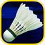 3D badminton Olympic Tournament