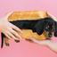 Wand identify your pets - revolutionary app w revenue $