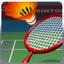 Badminton Sport Game