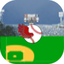 Bubba's Flying Baseball