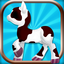 Pony Fashion Extravaganza - Dress up Your Pony Make It a Superstar